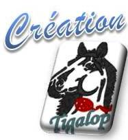 ceation Tigalop
